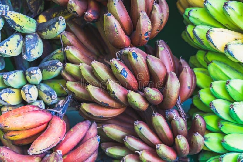 Veel soort bananen stock foto