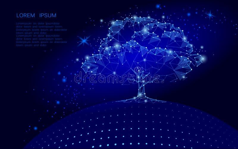 Veelhoekige boom op donkerblauwe hemelachtergrond De bolconcept van aardeeco De verbonden van de het puntkunst van de puntlijn il royalty-vrije illustratie