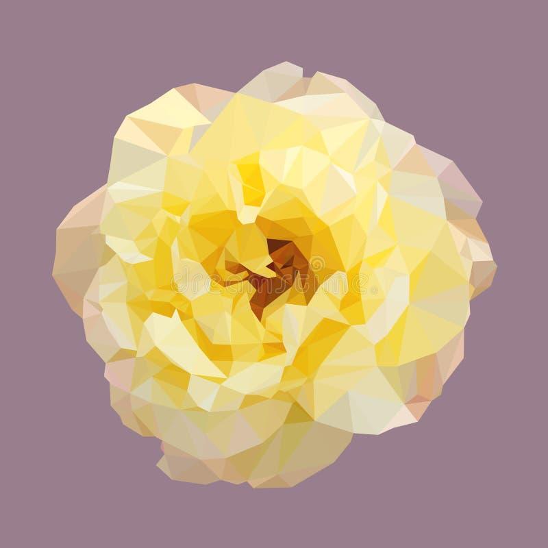 Veelhoekige geel nam, geïsoleerde veelhoek vectorbloem toe stock illustratie