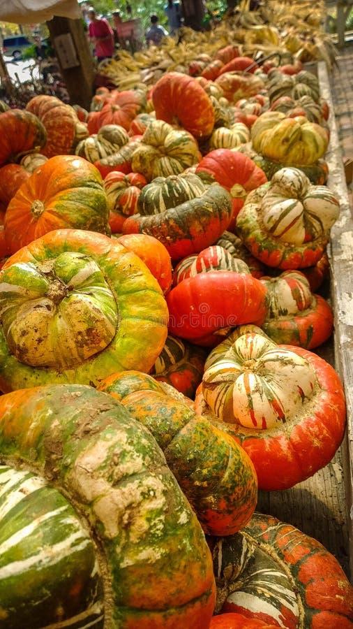 Veelkleurige pompoenen op houten lijst bij de markt van de landbouwer stock fotografie