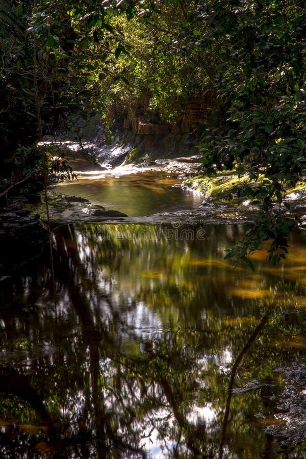 Veelvoudige blootstelling van de stroom van een rivier V royalty-vrije stock afbeelding