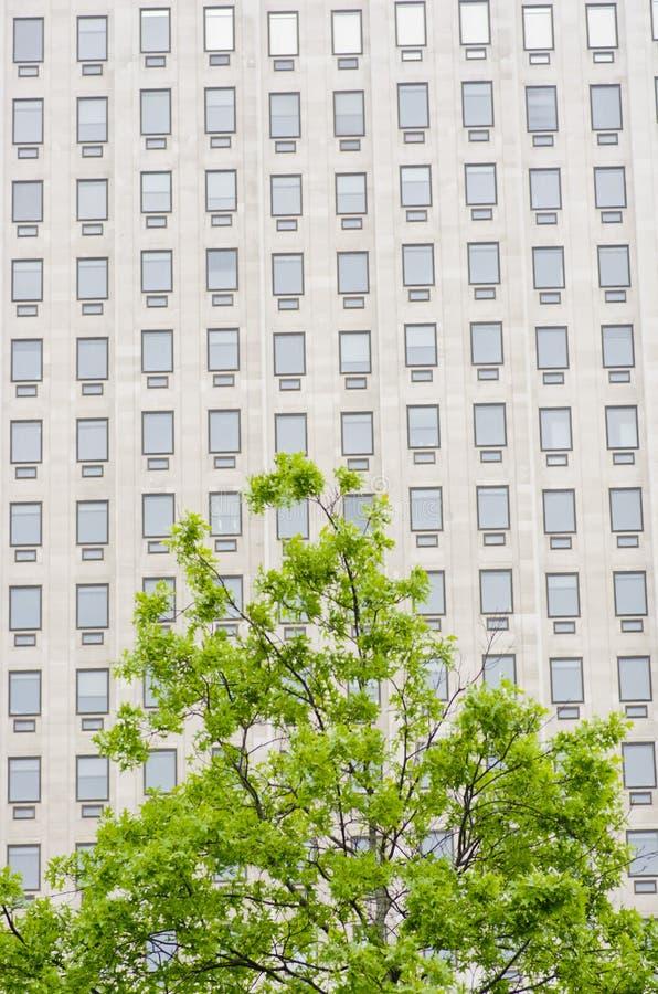 Veelvoudige vensters op een groot bureaugebouw Londen Engeland Europ stock afbeelding