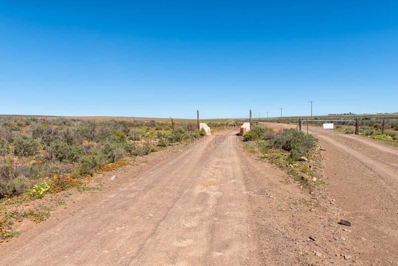 Veenet, poort en wildflowers dichtbij Papkuilsfontein royalty-vrije stock afbeeldingen