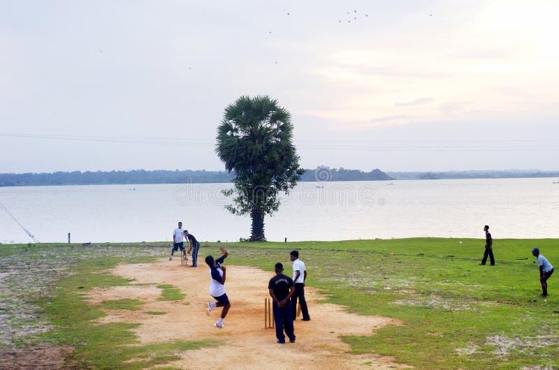 Veenmol in Sri Lanka royalty-vrije stock afbeeldingen
