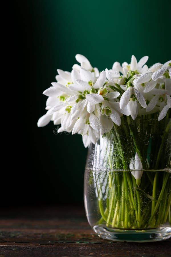 Veerbloemen in glazen vaas op de bijtende achtergrond royalty-vrije stock foto's