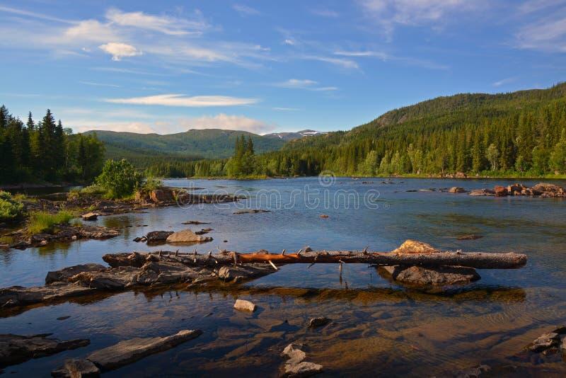 Vefsna flod royaltyfri fotografi