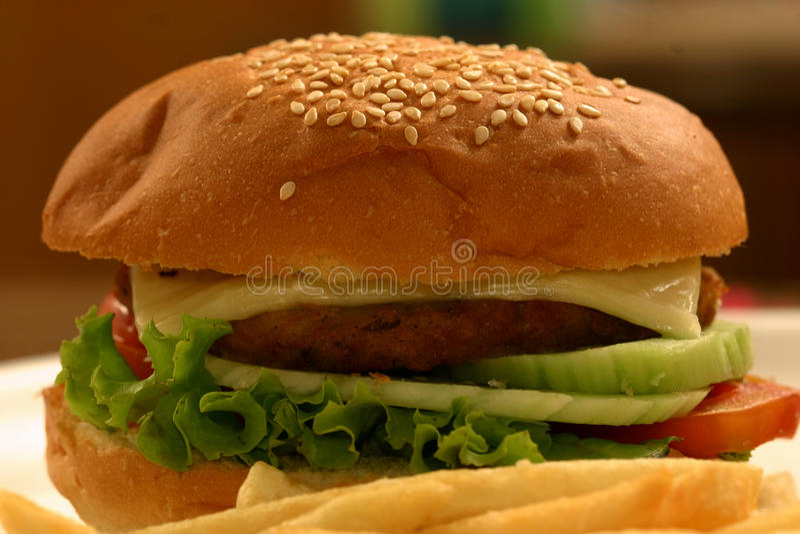Veg hamburgare arkivbilder