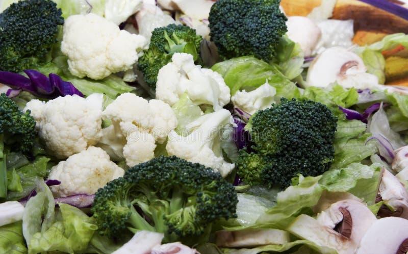 Veg Salat stockbild