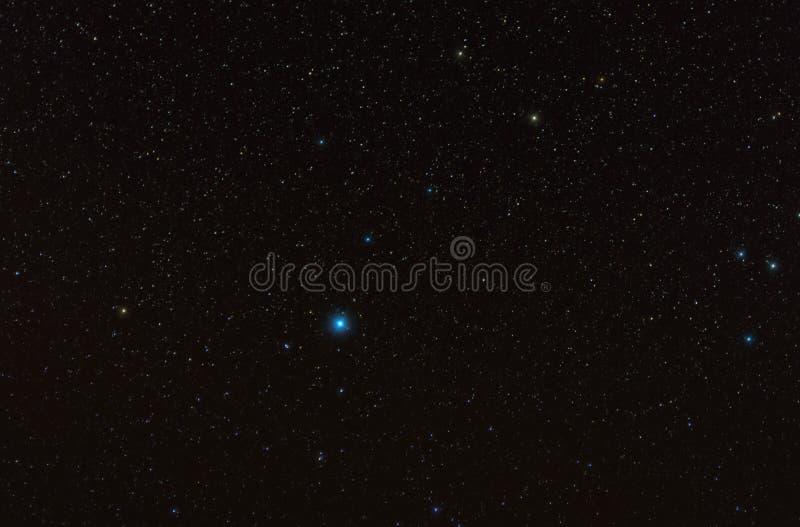 Vega en la constelación Lyra en el cielo oscuro lleno de estrellas imagen de archivo libre de regalías