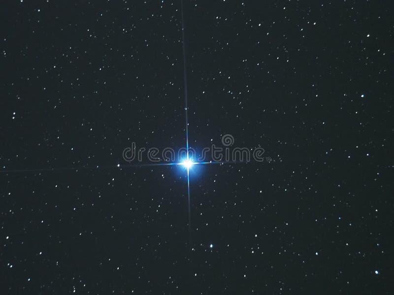 Vega protagoniza no céu noturno imagem de stock royalty free
