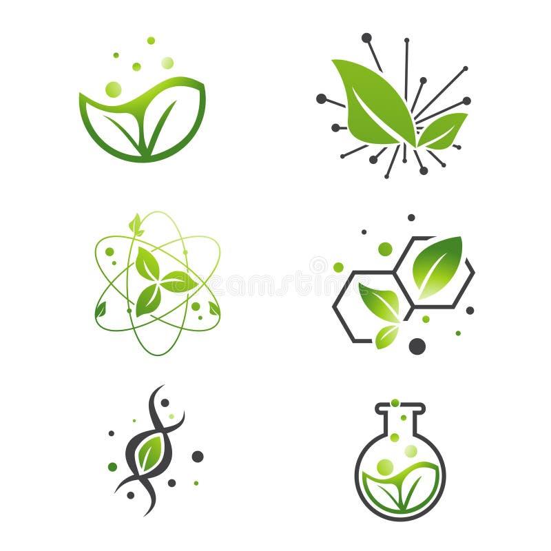 Vegan πράσινο σύνολο εργαστηρίων επιστήμης φύλλων αφηρημένο ελεύθερη απεικόνιση δικαιώματος