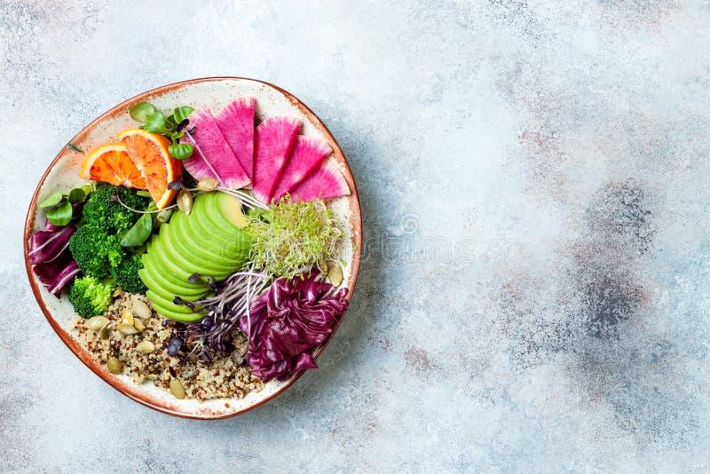 Vegan, шар Будды вытрезвителя с квиноа, микро- зелеными цветами, авокадоом, апельсином крови, брокколи, редиской арбуза, ростками стоковая фотография rf