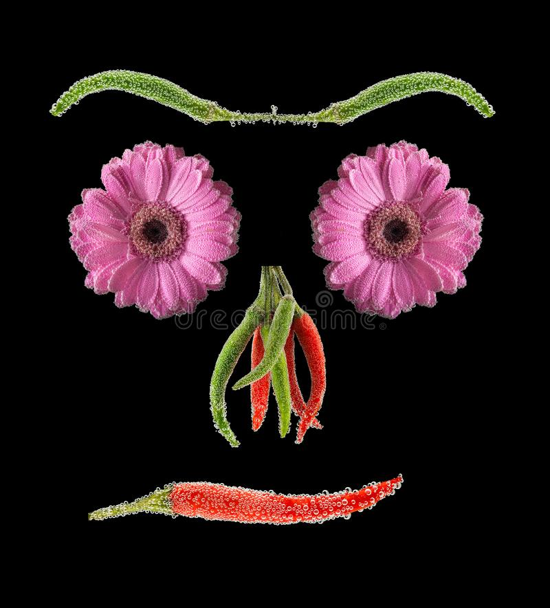 Vegan abstraction. Vegetable portrait. Raw food diet. Vegan. Abstract face made of flowers green and red hot peppers. Black background isolated royalty free stock image