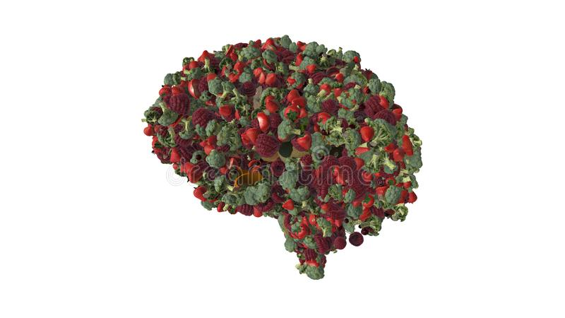 Vegan brain brain built from red and green fruits and vegetables  plants  - 3D illustration. Fruit and veg in the shape of a brain illustrating vegetarian and stock illustration