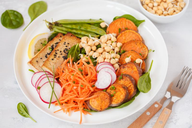 Vegan lunch, salad with vegetables, tofu, baked sweet potato, sp. Routs of chickpeas and green peas. Vegetarian healthy eating concept royalty free stock photos