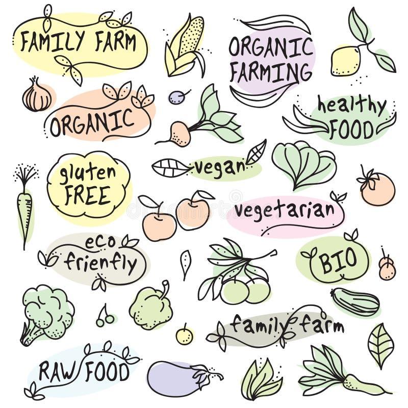 Vegan organique, nourriture fraîche, ferme de famille illustration stock