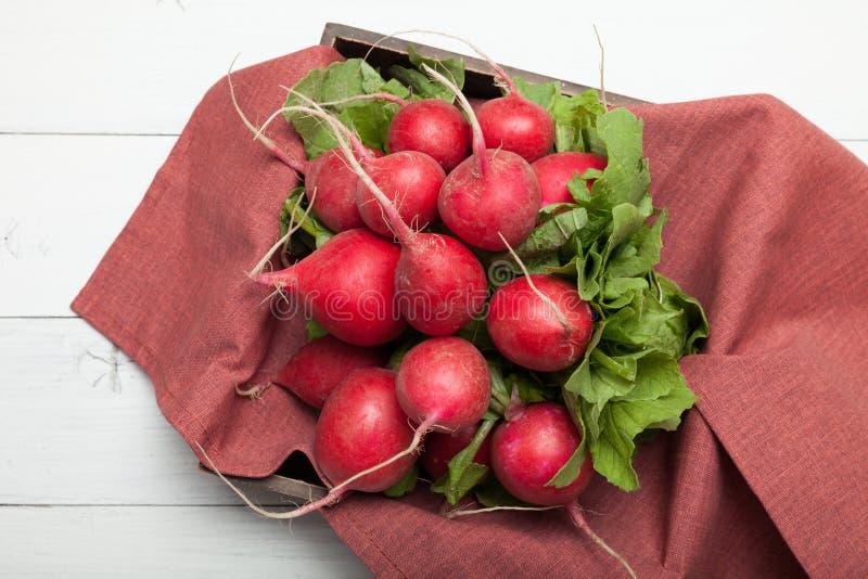 Vegan radish colorful breakfast, agriculture background.  stock photo