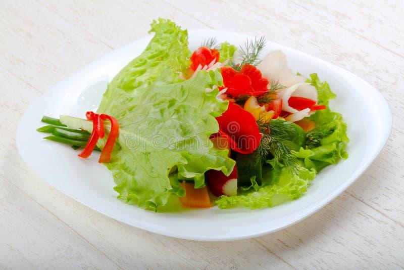 Vegan salad. Bouquet of vegetables stock photos