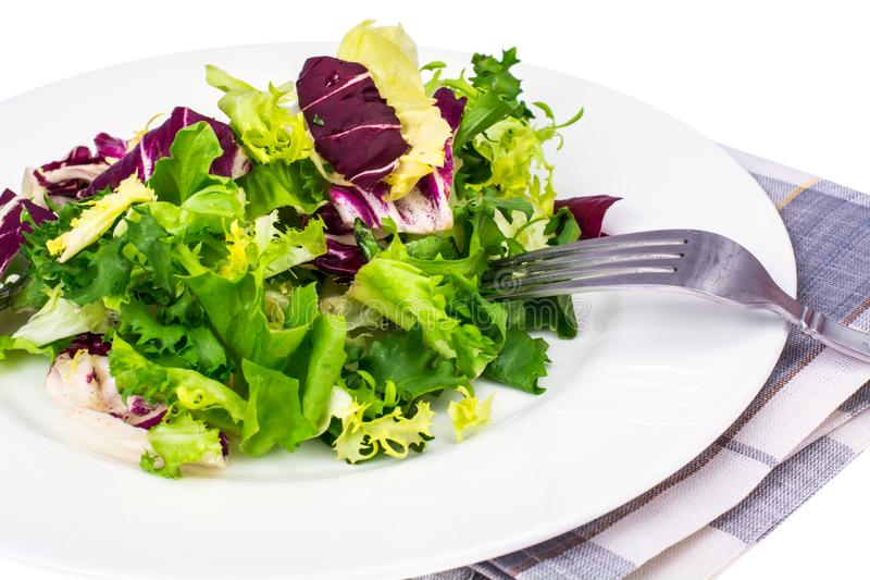 Vegan salad of fresh colored leaves. Studio Photo royalty free stock photo