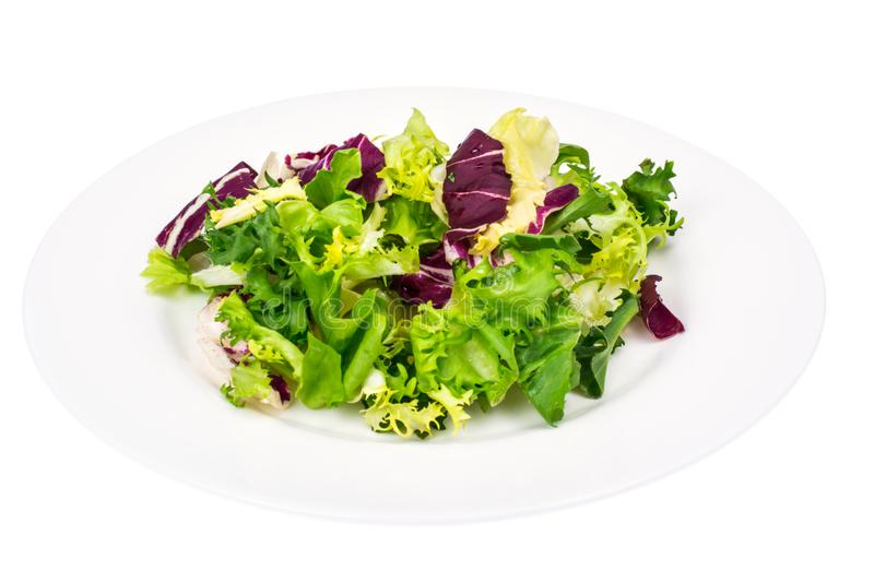 Vegan salad of fresh colored leaves. Studio Photo stock photo