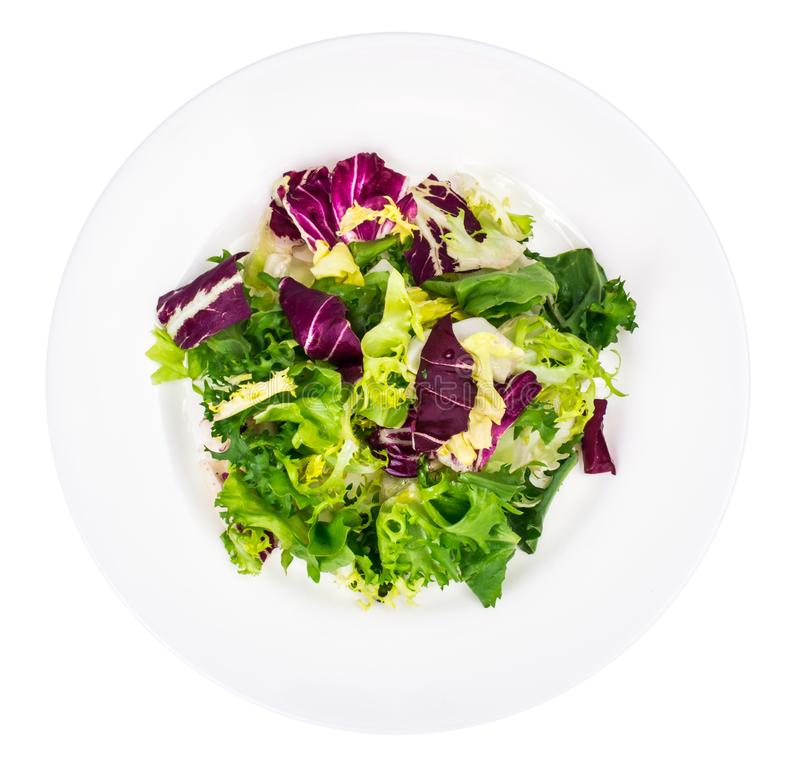 Vegan salad of fresh colored leaves. Studio Photo royalty free stock image