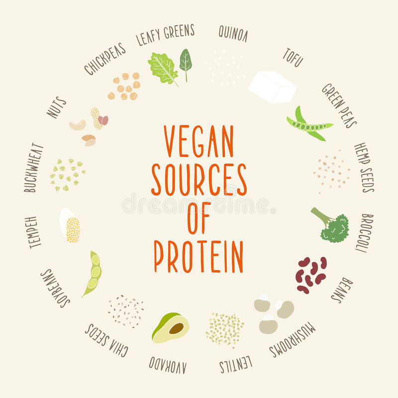 Vegan sources of protein. stock photography