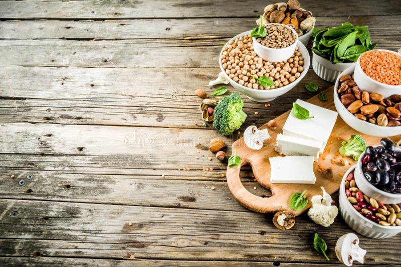 Πηγές πρωτεΐνης εγκαταστάσεων Vegan στοκ φωτογραφία με δικαίωμα ελεύθερης χρήσης