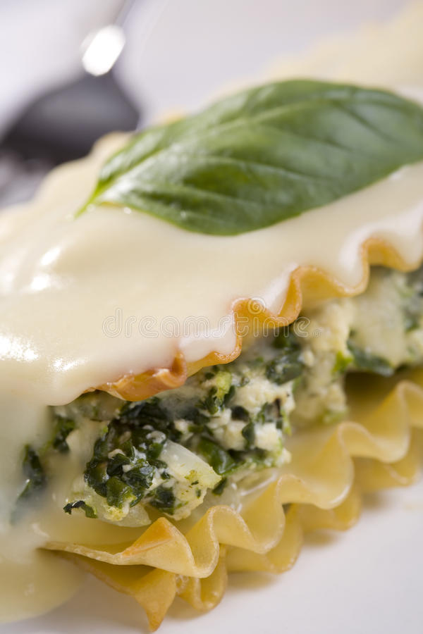 Download Vegan Tofu And Spinach Lasagna With White Sauce Stock Photo - Image: 10137706