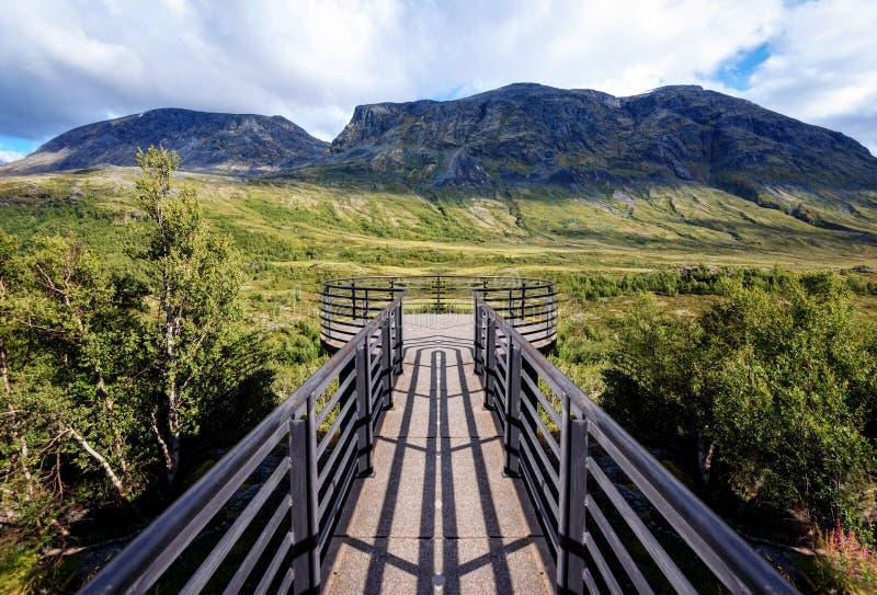 Vegaskjelet Norge fotografering för bildbyråer