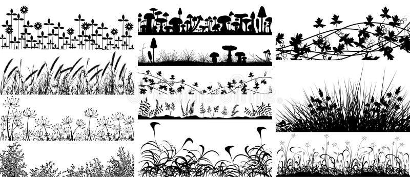 Vegetação ilustração royalty free