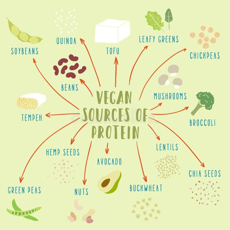Vegetabiliska källor för strikt vegetarian av protein vektor illustrationer