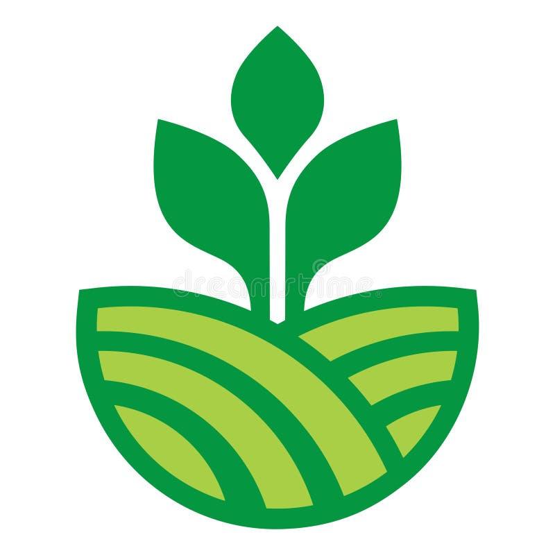 Vegetable вектор дизайна зеленого цвета фермы земледелия стоковое изображение