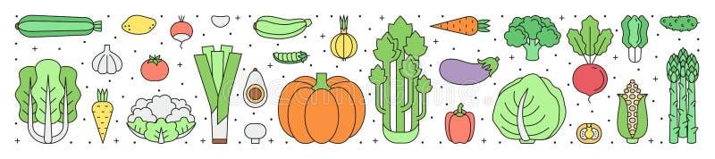 Vegetable пестротканая горизонтальная предпосылка Чистый и простой o иллюстрация вектора