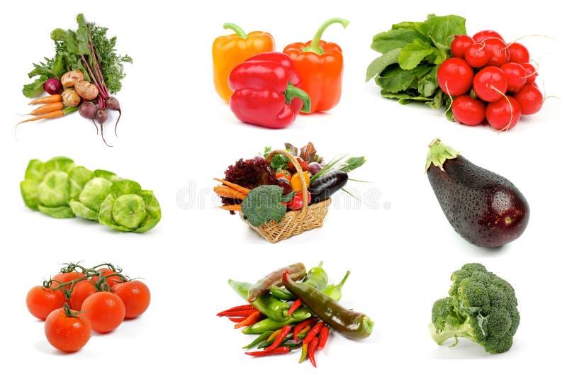 Vegetable собрание стоковая фотография rf
