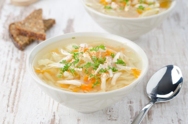 Vegetable суп с цыпленком и петрушка горизонтальная стоковые фотографии rf