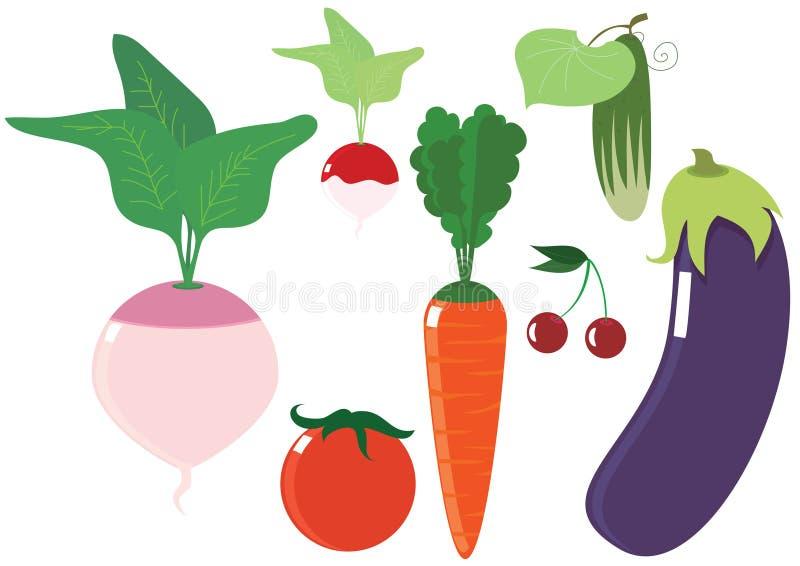 Vegetable vector illustration