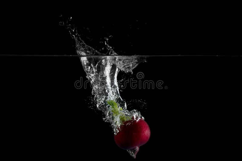 Download Vegetable stock image. Image of isolated, health, fresh - 18429925