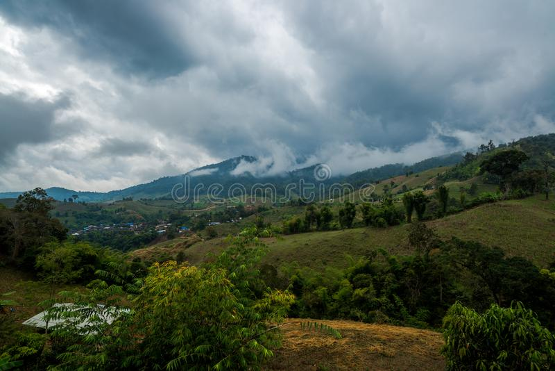 Vegetable Agriculture terrace farming in the village hill of forest mountain with cloudy sky. North of Thailand stock image
