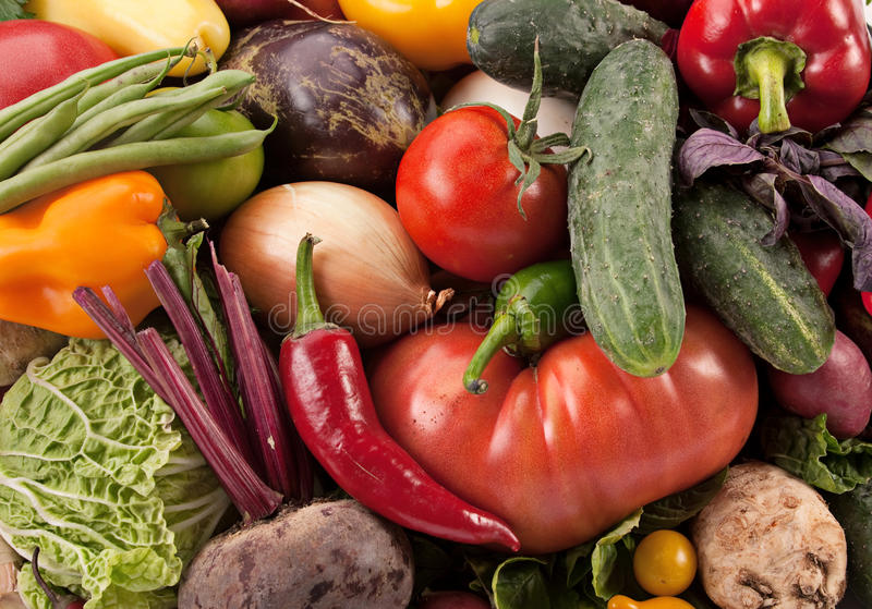 Download Vegetable background stock photo. Image of beet, green - 16251884