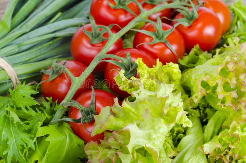 Vegetable background, lettuce, tomatoes and green onions. stock photography
