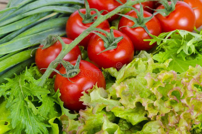 Vegetable background, lettuce, tomatoes and green onions. stock images