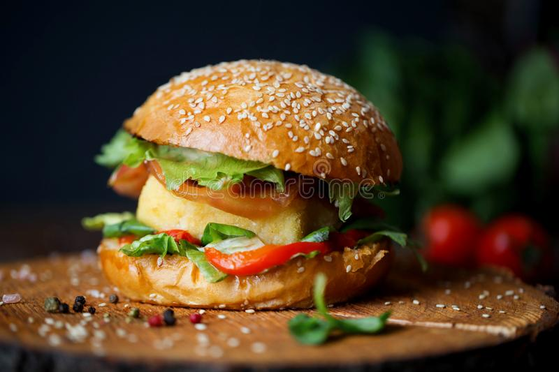 Vegetable burger with tofu stock photography
