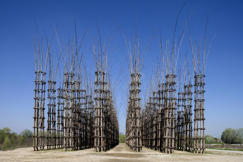 The Vegetable Cathedral in Lodi, Italy, made up 108 wooden columns among which an oak tree has been planted stock photography