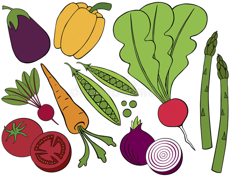 Download Vegetable Collection Royalty Free Stock Photos - Image: 24093338