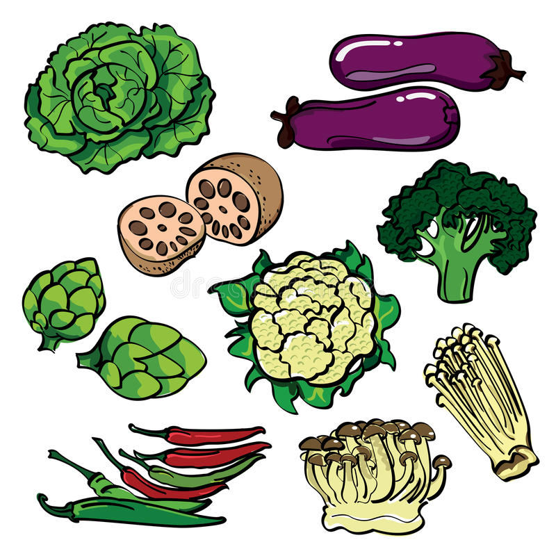 Vegetable Contains Vegetable color set stock illustration illustration of cooking download vegetable color set stock illustration illustration of cooking 51052136 workwithnaturefo