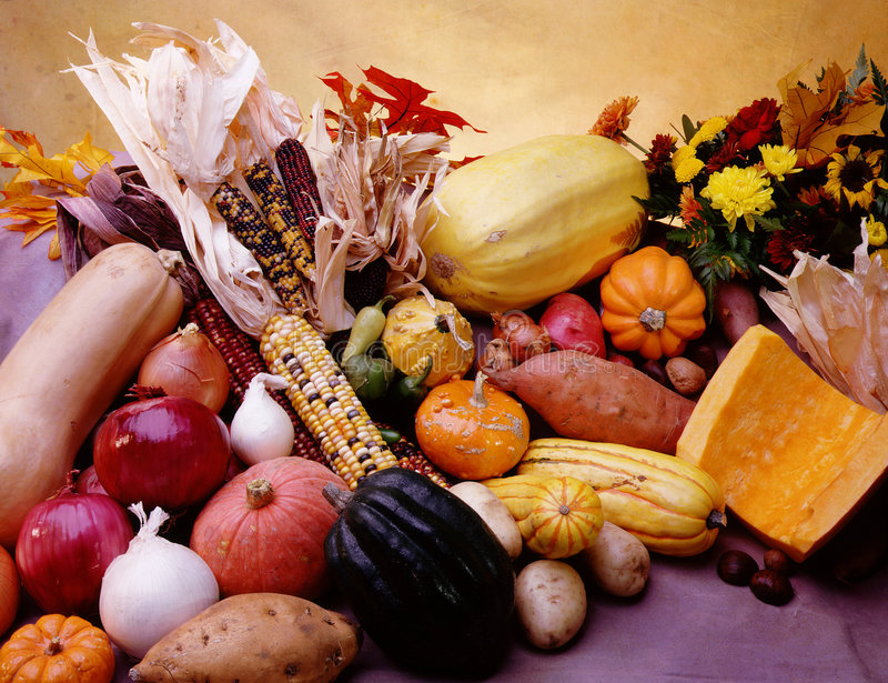 Vegetable cornucopia stock photography