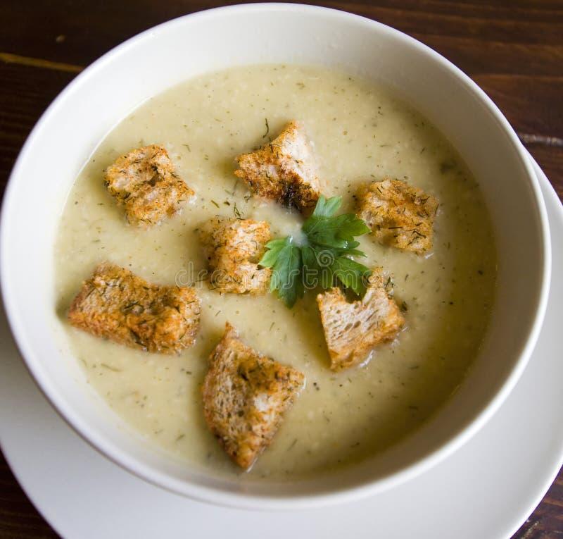Vegetable cream суп стоковые фото