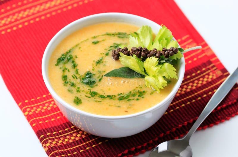 Vegetable cream soup stock photos