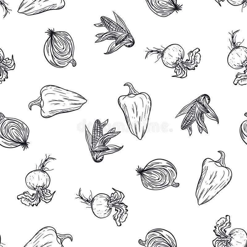 Vegetable doodle pattern hand drawing on white background. Doodle drawing vegetable pattern. Ripe autumn crop and. Farming harvest. Market garden background stock photo