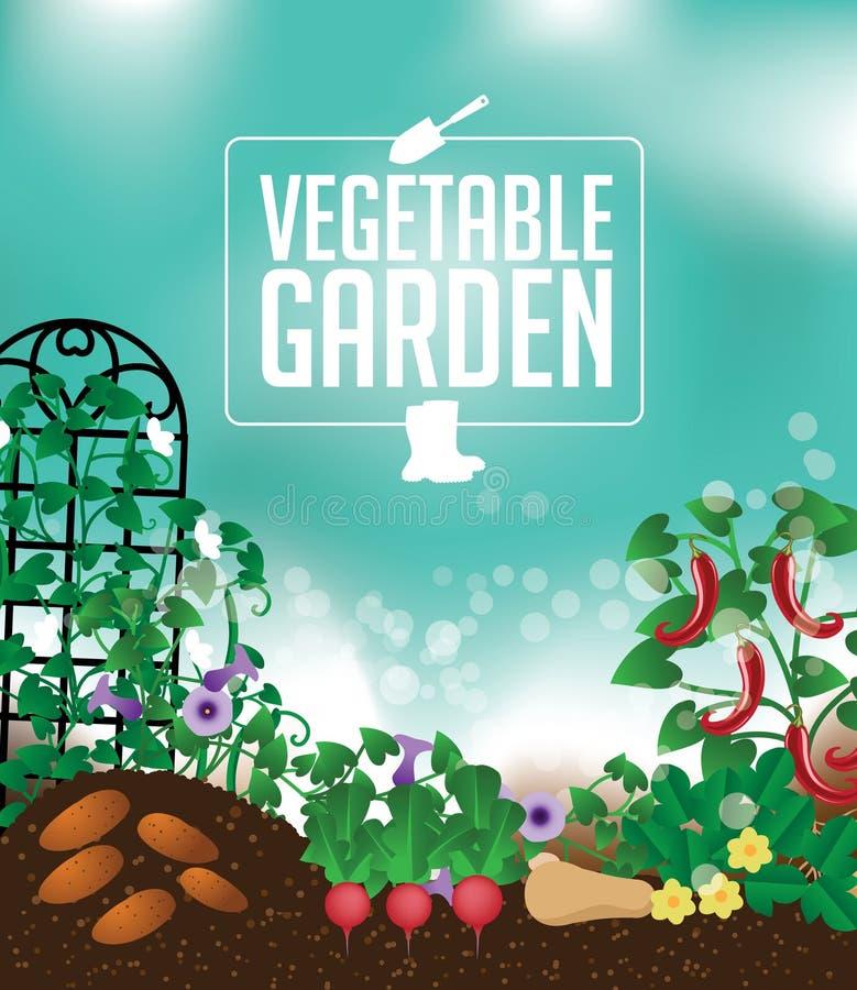 Vegetable Garden Background Stock Vector - Illustration of ...